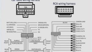 Dual Voice Coil Wiring Diagram Inr Wiring Diagram Wiring Diagram Fascinating