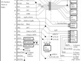 E4od Wiring Diagram E40d Wiring Harness Wiring Diagram Article Review