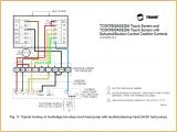 Electric Hot Water Heater Wiring Diagram Electric Water Heater thermostat Wiring Hot Diagram T O D Style