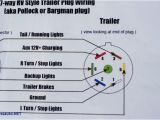 Ez Loader Boat Trailer Wiring Diagram Ez Loader Boat Trailer Wiring Diagram