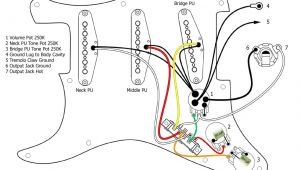 Fender American Standard Stratocaster Wiring Diagram Guitar Wiring Diagrams 3 Pickups Fender American Standard and