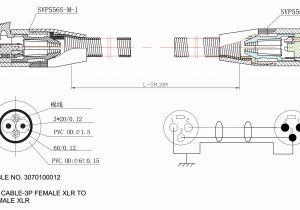 Fender Humbucker Wiring Diagram Esp Ltd Wiring Diagram Wiring Diagram Centre