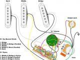 Fender Humbucker Wiring Diagram Fender Squier Guitar Wiring Diagram Wiring Diagram Paper