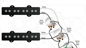 Fender Squier Jazz Bass Wiring Diagram Jazz B Wiring Diagram Wiring Diagram Technic