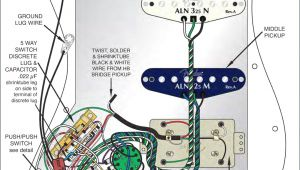 Fender Strat Plus Wiring Diagram Wiring Diagram Fender Japan Wiring Diagrams Ments