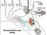 Fender Strat Wiring Diagram Fender Standard Stratocaster Wiring Diagram Wiring Diagram Name
