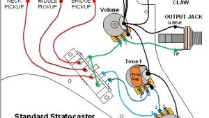 Fender Strat Wiring Diagram Fender Standard Stratocaster Wiring Diagram Wiring Diagram Name