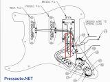 Fender Stratocaster Wiring Diagram Fender Wiring Diagrams Wiring Diagram for You