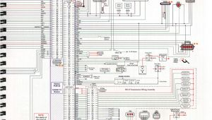 Ford 6.0 Ficm Wiring Diagram Injector Wiring Harness Diagram Wiring Diagram