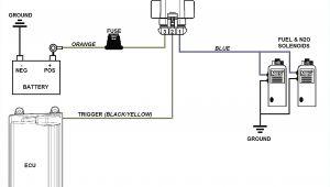 Fuel Pump Wiring Diagram Bosch Fuel Pump Wiring Harness Wiring Diagram Blog