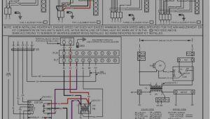 Goodman Fan Control Board Wiring Diagram Aruf Wiring Diagram Pro Wiring Diagram
