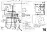 Goodman Heat Strip Wiring Diagram Goodman Heat Wiring Diagram Wiring Diagram Review
