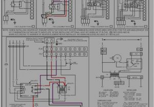 Goodman Package Heat Pump Wiring Diagram Aruf Wiring Diagram Pro Wiring Diagram