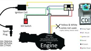Gy6 Dc Cdi Wiring Diagram 50cc Cdi Wiring Diagram Wiring Diagram Name