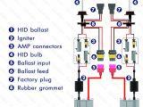 H4 Hid Wiring Diagram Philips Hid Wiring Diagram Wiring Diagram List