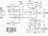 Hammerhead Go Kart Wiring Diagram Wrg 8370 Hamer Wiring Diagram