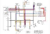 Harley Front Turn Signal Wiring Diagram Wiring Diagram 97 Sportster Turn Signal Relay Wiring forums