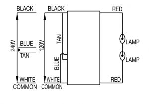 High Pressure sodium Ballast Wiring Diagram Hps Wiring Diagram Wiring Diagram