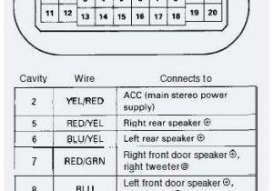 Honda Accord Stereo Wiring Diagram 94 Honda Accord Wiring Wiring Diagram Article Review