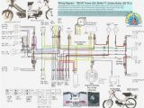 Honda C70 Cdi Wiring Diagram Wiring Diagram Honda Wave 100 Wiring Diagram Show