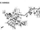 Honda Cbr 600 F2 Wiring Diagram Cbr F4i Wiring Diagram Wiring Diagram Centre