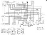 Honda Fourtrax 250 Wiring Diagram Honda 300 Wiring Diagram Blog Wiring Diagram