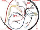 Honda Gx390 Coil Wiring Diagram Engine Wiring Harness for Gy6 150cc Engine