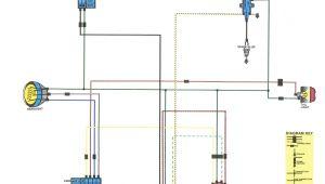 Honda Trx250r Wiring Diagram Trx250r Wiring Diagram Wiring Diagram Expert