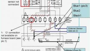 Honeywell thermostat Wire Diagram Honeywell thermostat Hookup Turek2014 Info
