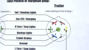 Hopkins 7 Way Plug Wiring Diagram Hopkins Rv Wiring Diagram Wiring Diagram Insider