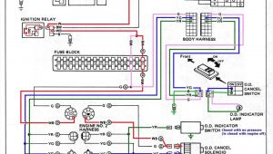 How to Wire A Generator Transfer Switch Diagram How to Wire A Generator Transfer Switch Diagram Electrical Wiring