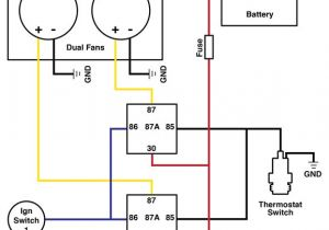 How to Wire Dual Electric Fans Diagram Diy Automotive Wiring Diagrams Wiring Diagram View