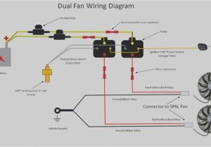How to Wire Dual Electric Fans Diagram Exhausto Fan Wiring Schematic Wiring Diagram