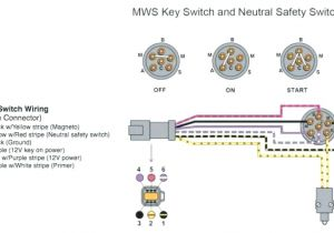 Indak Key Switch Wiring Diagram Indak Ignition Switch Es 6 Terminal 7 Key Diagram Filbookfest Info