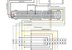 Jensen Radio Wiring Diagram Ouku Wire Harness for Jensen Wiring Diagram View