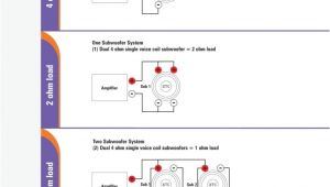 Jl Audio Jx1000 1d Wiring Diagram Jl Audio Jx1000 1d 2 Subwoofer 2ohm Wiring Diagram