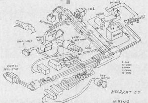 Kazuma 50cc atv Wiring Diagram 50cc atv Engine Diagram Wiring Diagram Sample