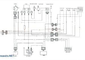 Kazuma 50cc atv Wiring Diagram Redcat Wiring Diagram Wiring Diagrams
