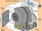 Kenmore Dryer thermostat Wiring Diagram why is My Dryer so Noisy and How Do I Fix It with Images