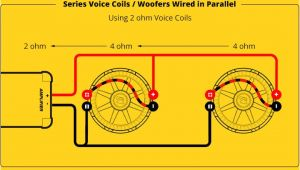 Kicker Comp Wiring Diagram Kicker Comp 12 Wiring Diagram Eyelash Me