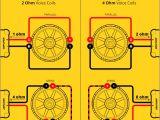 Kicker Dvc Wiring Diagram Kicker Comp 12 Wiring Diagram Eyelash Me