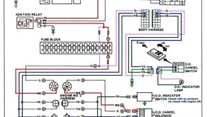 Knox Box Wiring Diagram Kikker 5150 Wiring Harness Wiring Diagrams Structure