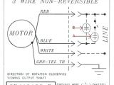 Leland Faraday Wiring Diagram Leland Electric Motor Jinya