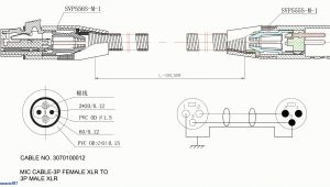 Les Paul Wiring Diagram EpiPhone Les Paul Special 2 Wiring Diagram Wiring Diagram Center