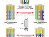 Leviton Cat6 Jack Wiring Diagram Cat 5 Telephone Jack Wiring Color Code Wiring Diagram