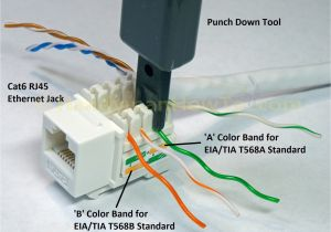 Leviton Cat6 Jack Wiring Diagram Ethernet Jack Wiring Wiring Diagram Expert
