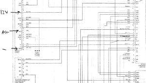 Lexus Gs300 Stereo Wiring Diagram F16a Fiat Doblo Radio Wiring Diagram Wiring Library