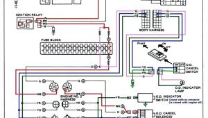 Lighted toggle Switch Wiring Diagram Rocker Switch Wiring Diagram Bcberhampur org