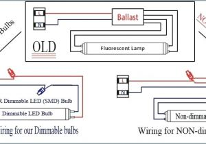 Magnetic Ballast Wiring Diagram Pdf Electronic Ballast Wiring Diagram Wiring Diagram Paper
