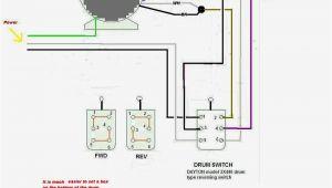 Motor Reversing Switch Wiring Diagram Electric Motor Reversing Switch Wiring Diagram Free